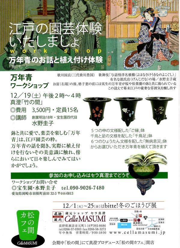 2015オモト.JPG