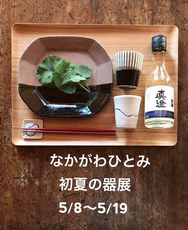 中川ひとみ2019.jpg